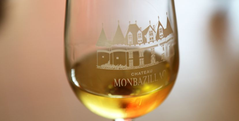 Come with me in the heart of the monbazillac harvest!