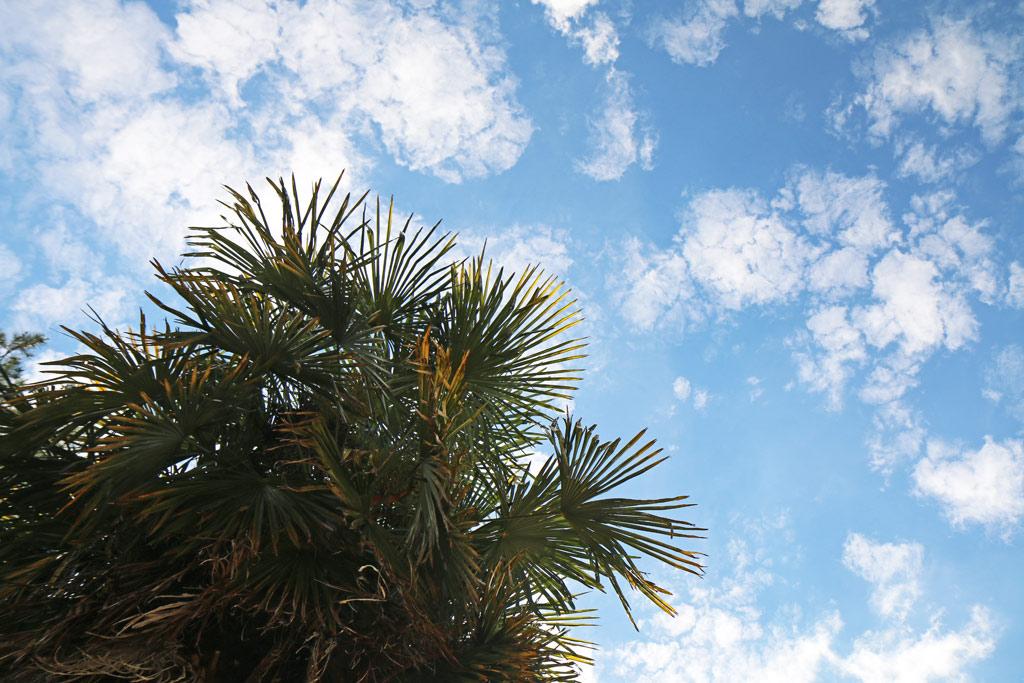 Le ciel est toujours bleu en été, en Dordogne, le saviez-vous ? ;)