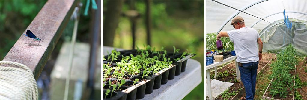La nature vit en harmonie avec les activités d'hébergement et de loisir