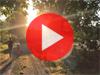 vidéo pique-nique champêtre