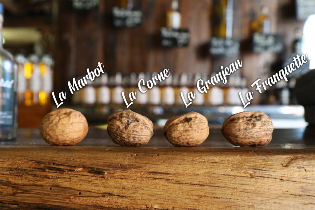 Les 4 variétés de l'AOP Noix du Périgord