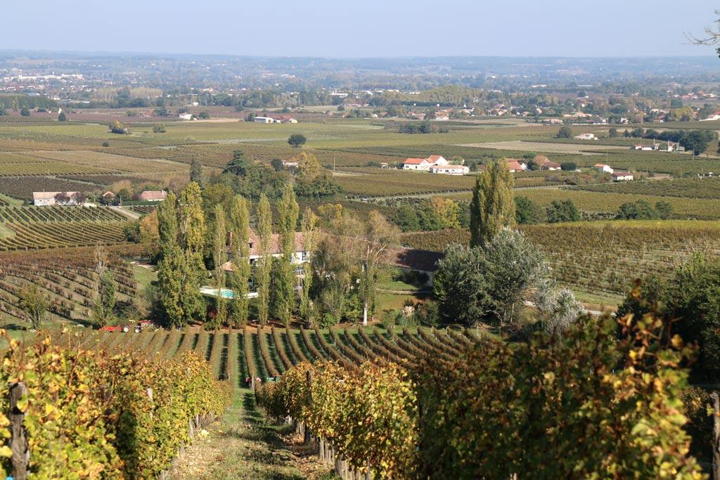 Les coteaux de Monbazillac et la vallée de Bergerac au loin