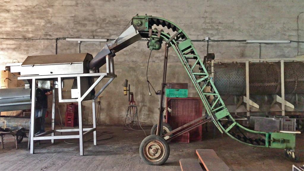 machine pour nettoyer les châtaignes
