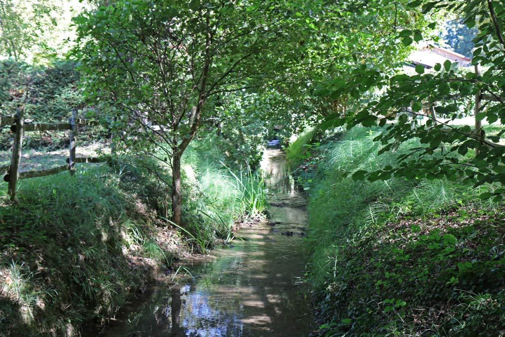 Le ruisseau au milieu du camping