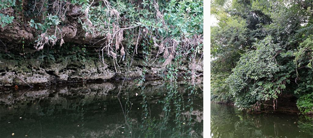 Les Gabarres de Bergerac Les cluzeaux sur la Dordogne