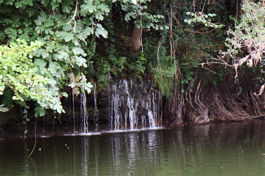 Les Gabarres de Bergerac résurgence d'eau