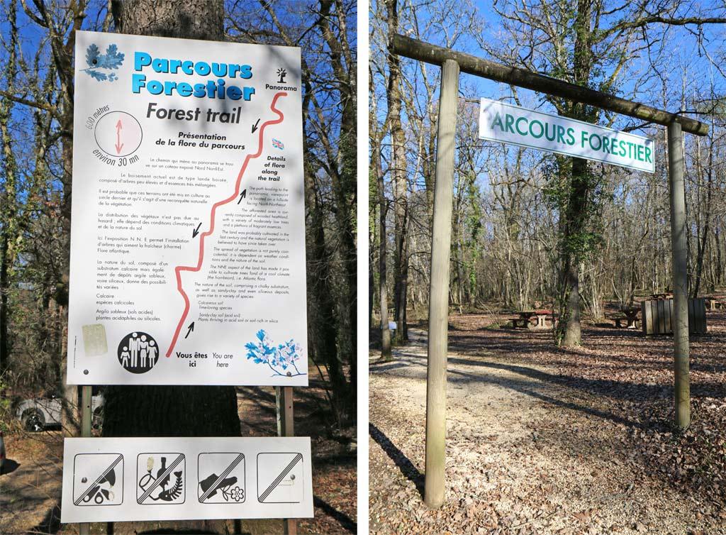 Parcours forestier proumeyssac