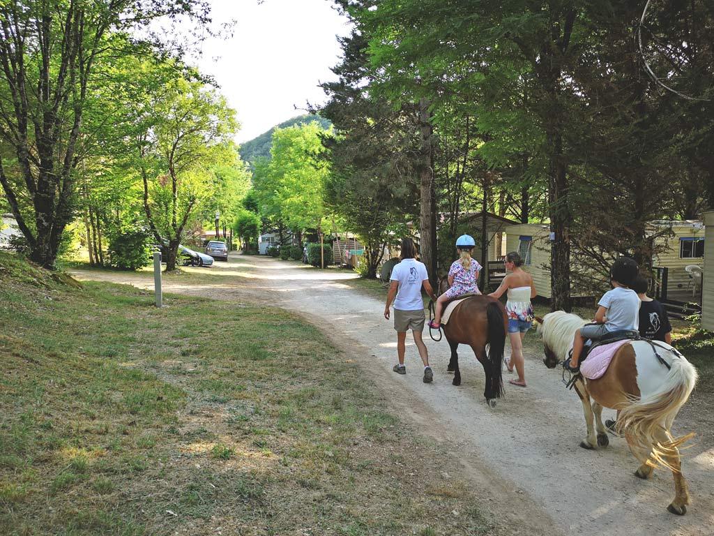 walk horse camping of the great prade