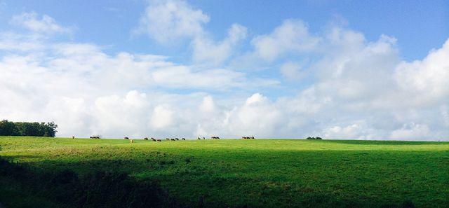 Paysage du Périgord - Perigord Vert